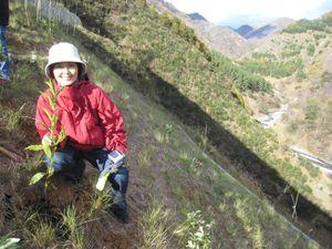 この急斜面に植樹しました。右の谷底に見えるのが渡良瀬川