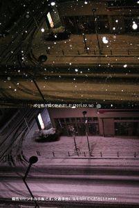 ボタ雪が降る始めました。**積雪10センチの予報ですす。交通事故に気を付けてください***(2011.2.14夜)